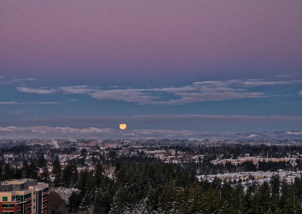 Portland's Epic SnowStorm